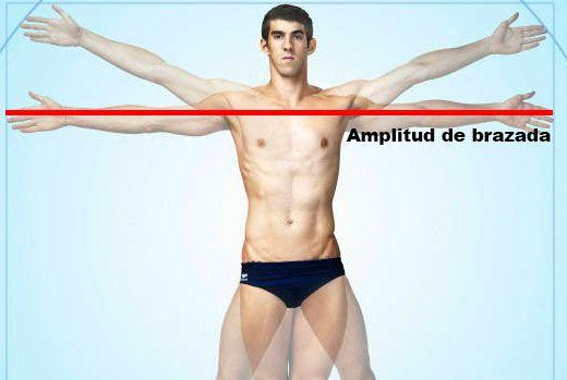 amplitud-de-brazada-entrenamiento-de-triatlon